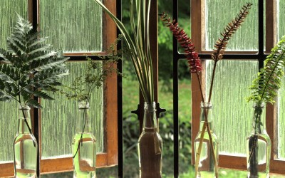Botanical Bottles