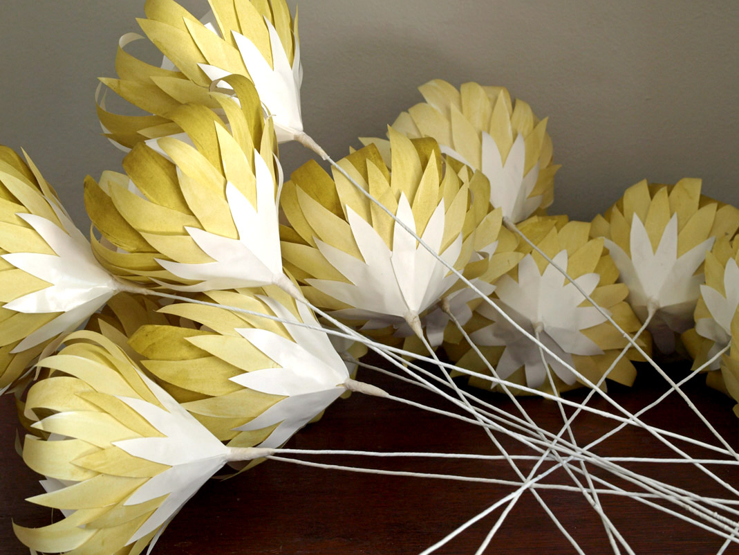 Indigenous Paper Proteas Handcrafted From Recycled Papers