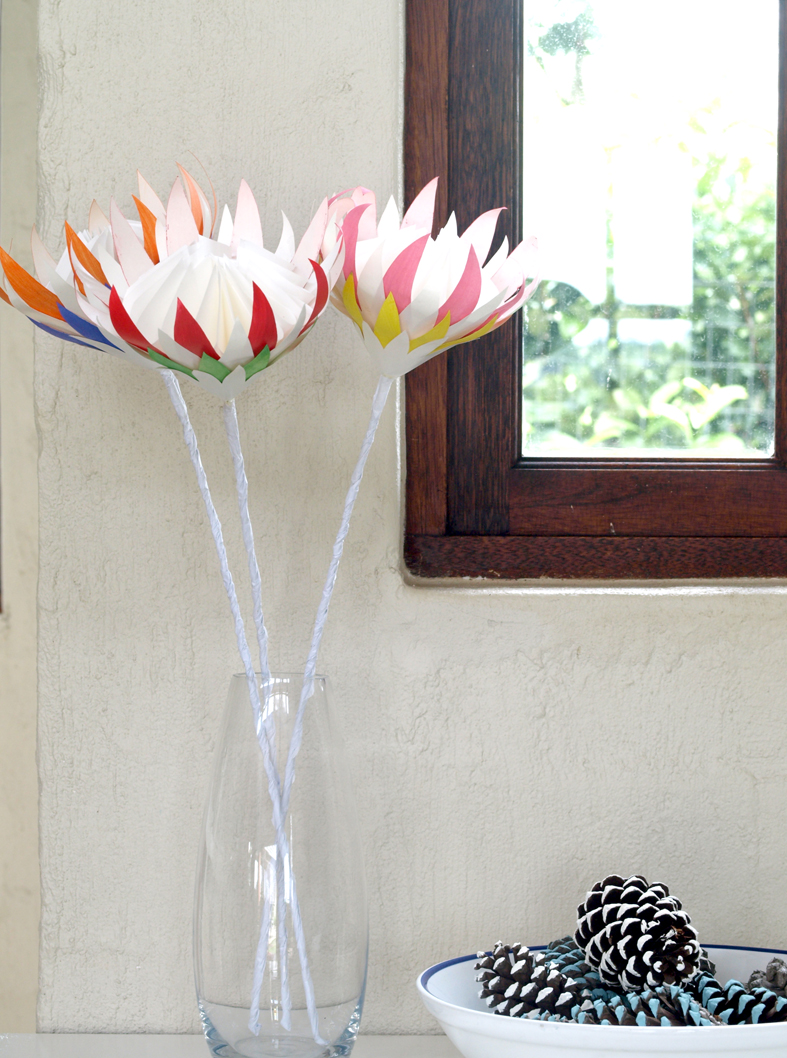 Multicoloured Paper Proteas
