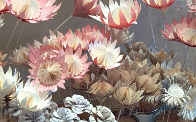 The Design Indaba Expo- Paper Proteas