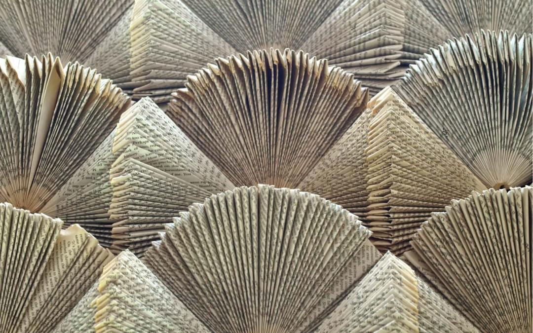 Concertina Shells…