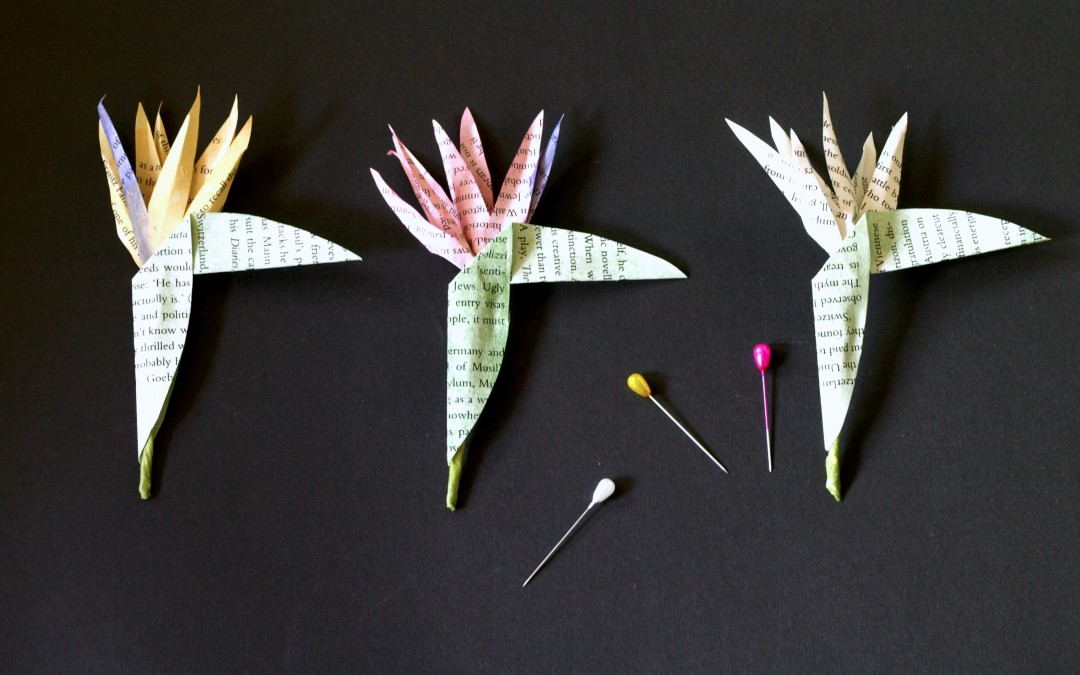 Peace Lily Buttonholes Indigenous Blooms