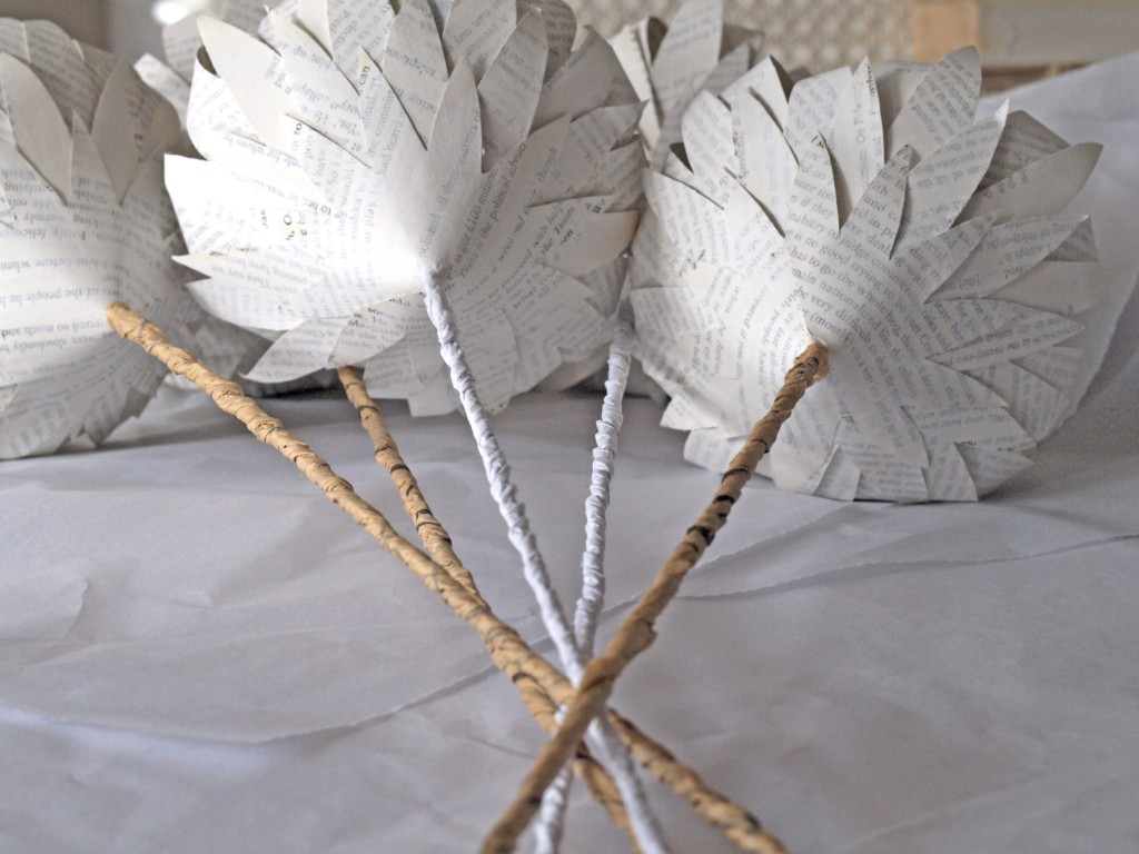 White Washed Book Paper Proteas