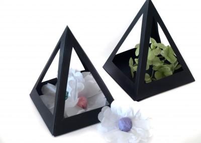 Paper Terrarium