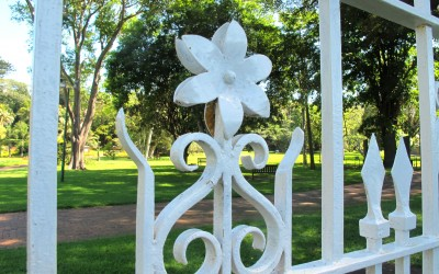 Beautiful Durban Botanical Gardens