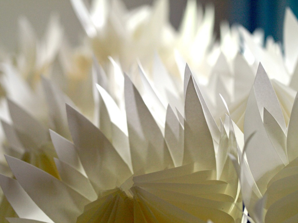Pointed Paper Petals