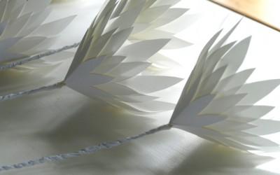 Pure White Paper Proteas