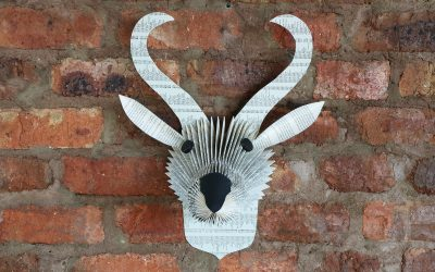 Folded Book Buck – Springbok Trophy