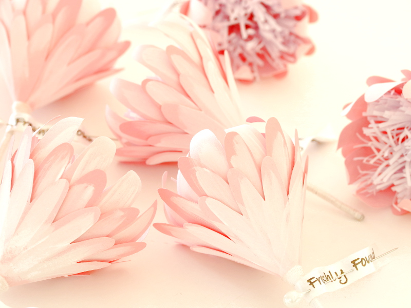 Pink Protea Flowers